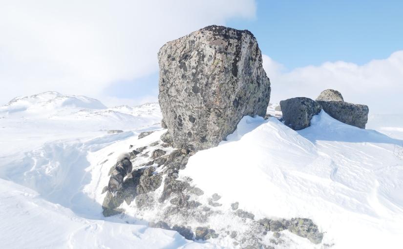 Dag 13: Vindfull og kald dag fra Jonstølen tilBleskestadmoen