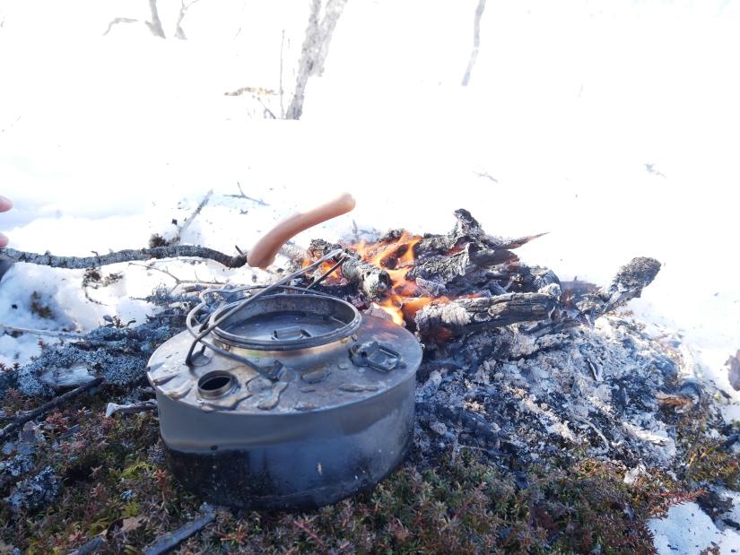 Dag 49: Fra Lillsjø til Stor-Rensjøn i saktefart