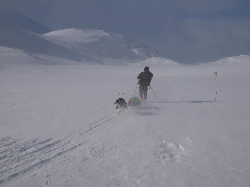 Dag 88: Seilte med vinden fra Hukejaure tilSälkastuene