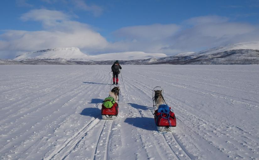 Dag 97: Grensevandring tilKilpisjärvi