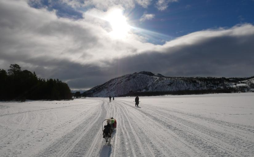 Dag 108: Varm tur fra Skoganvarre tilLakselv