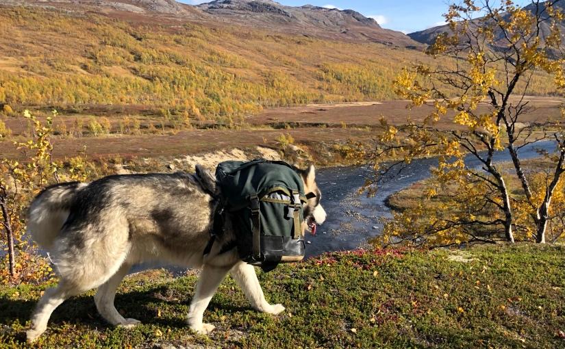 E1 dag 58: Fra Saltfjellstua tilKrukki